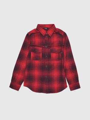 CMILLERPATCH,  - Shirts
